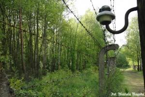 11_Łambinowice- były obóz jeniecki Stalag VIII F 14