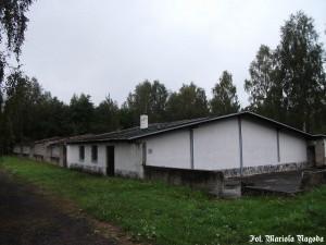 9_Łambinowice- były obóz jeniecki Stalag VIII F 14 (2)