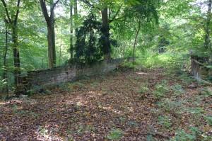 Pokój- pozostałości po dawnych urządzeniach parku 1