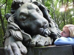 Pokój- przy śpiącym lwie 9