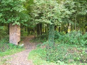 Pokój- wejście do parku