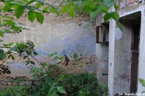 IS_Folwark Leśnik, dom mieszkalny 6