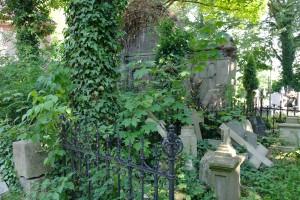 Nowa Wieś Królew.- na cmentarzu 1
