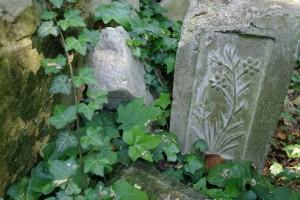 Nowa Wieś Królew.- na cmentarzu 2