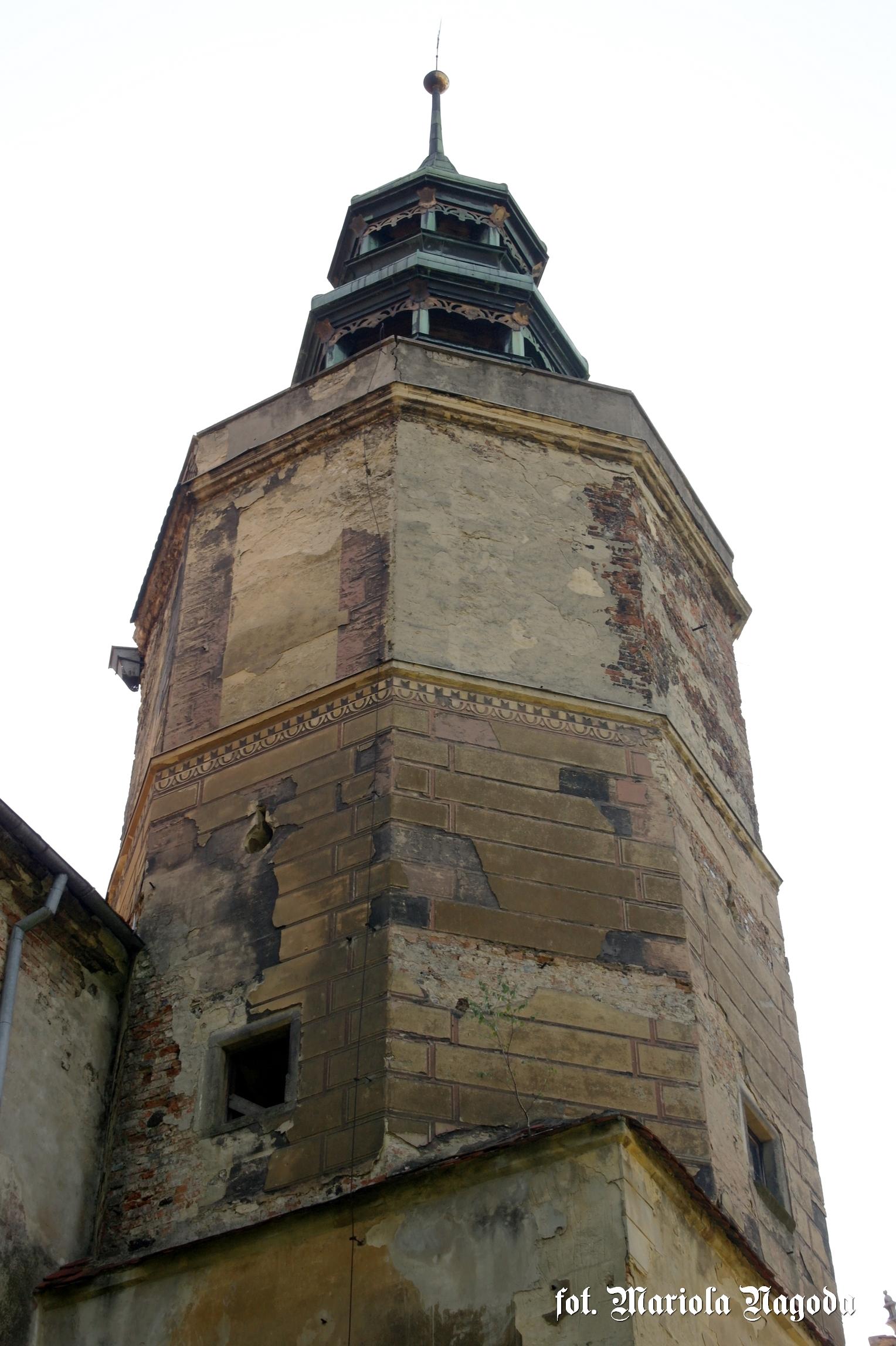 Wieża zamku i resztki boniowań