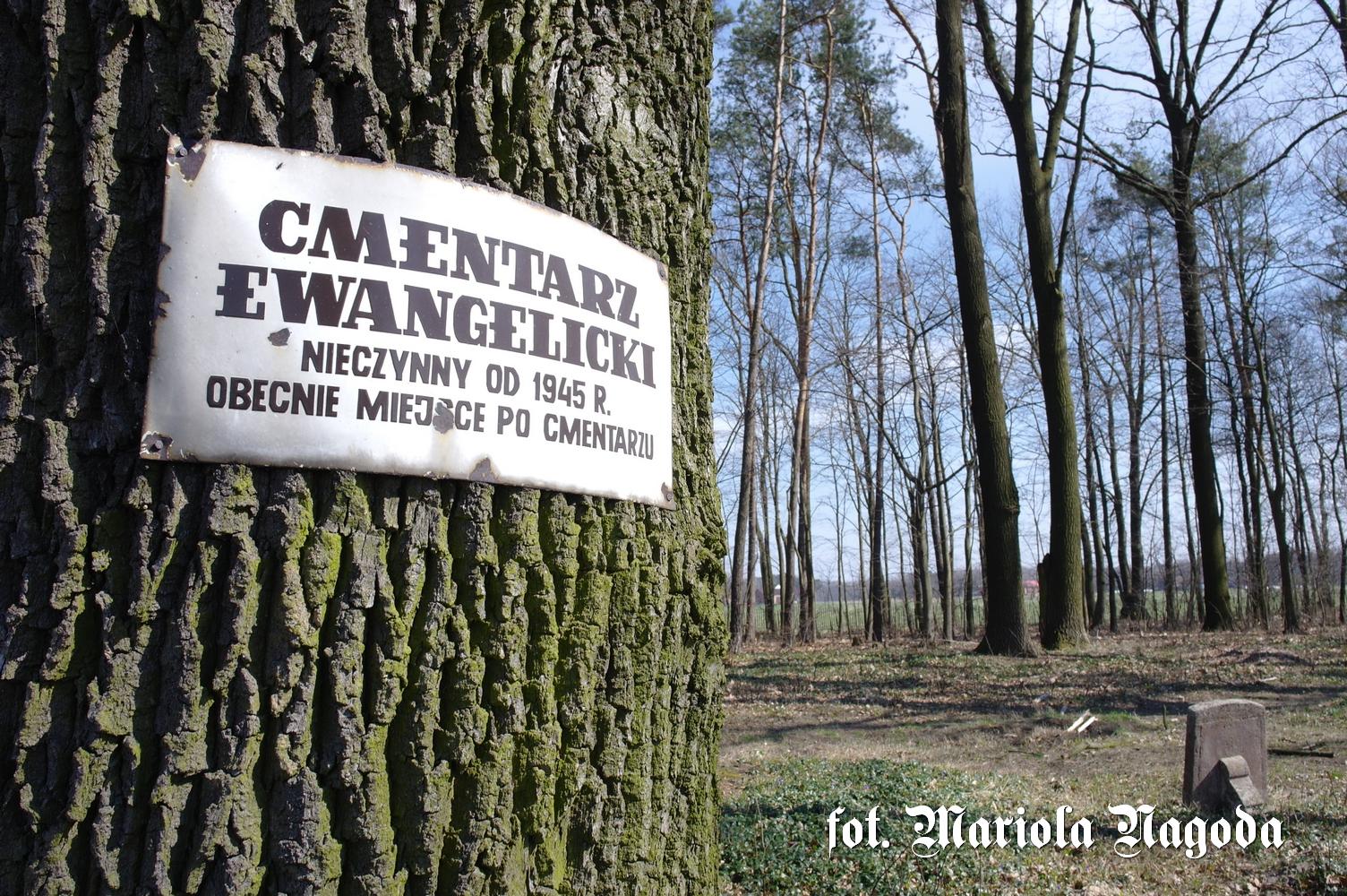 Bzinica Nowa- cmentarz husycki 1