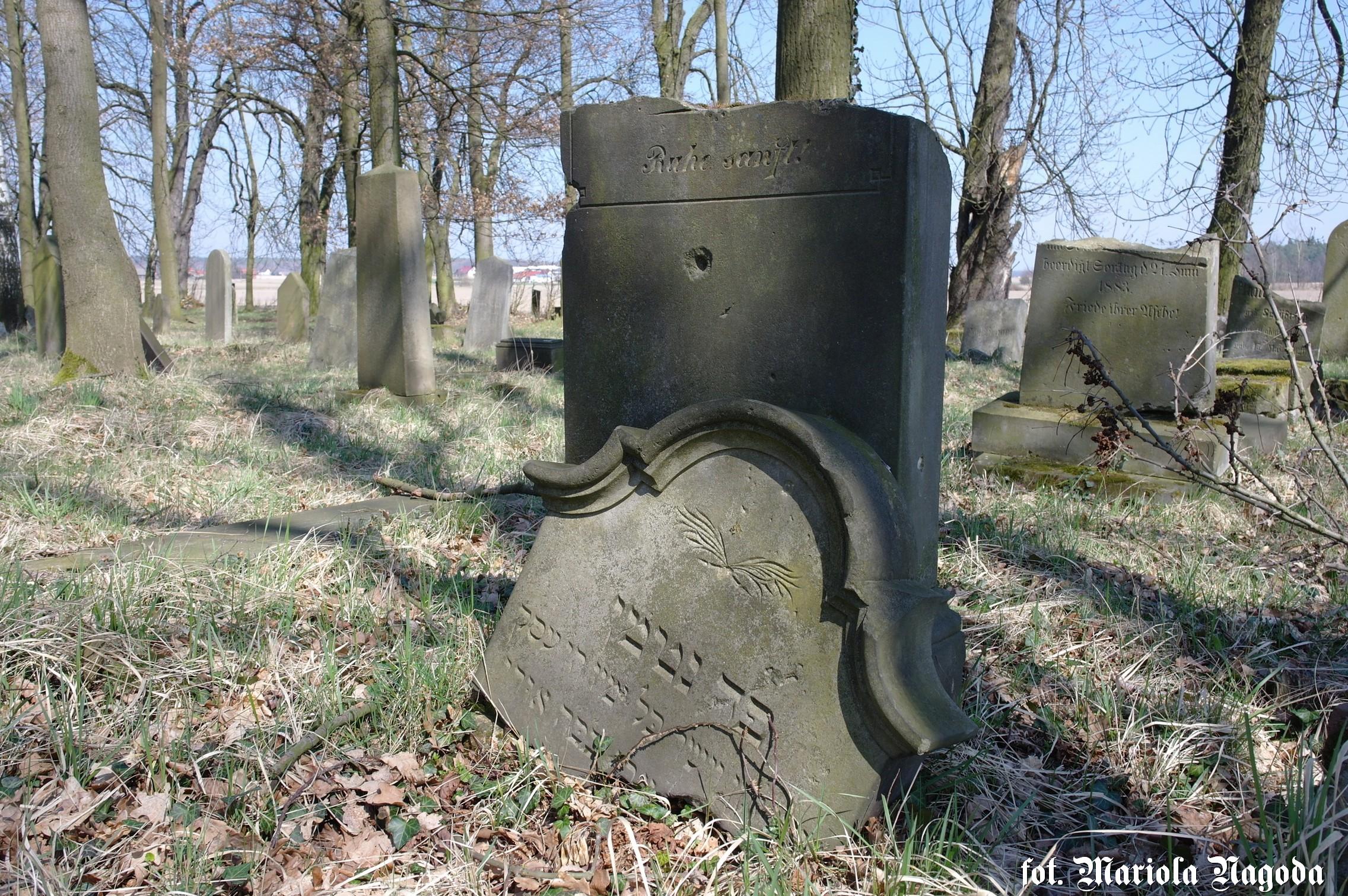 dobrodzien-cmentarz-zydowski-11