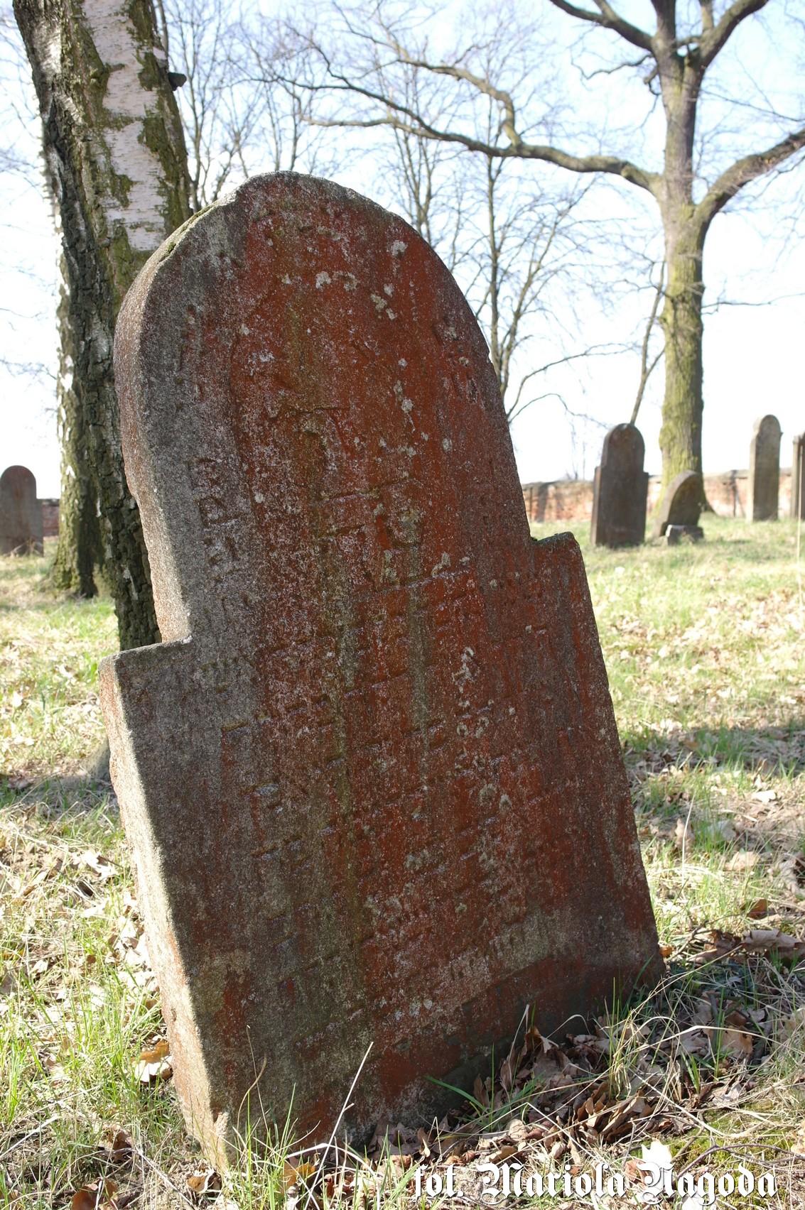 dobrodzien-cmentarz-zydowski-14